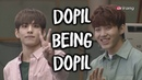 Dopil Being Dopil Day6 Dowoon Wonpil