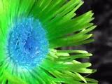 Ultrabeat - Pretty Green Eyes (Dj Hixxy remix)