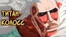 Колоссальный Титан из аниме Атака Титанов Вторжение Гигантов особенности биология пар