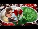 Алиса Мон- Подорожник - трава- Монтаж Светлана Левина-pesnia--muzyca--kowo--scscscrp