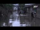 Волонтеры спасают животных после наводнения в Индии