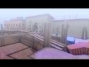 VINE OF CONTRA CITY-Раскрошил