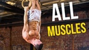 THE ULTIMATE PULLING EXERCISE | Hit All Muscles!