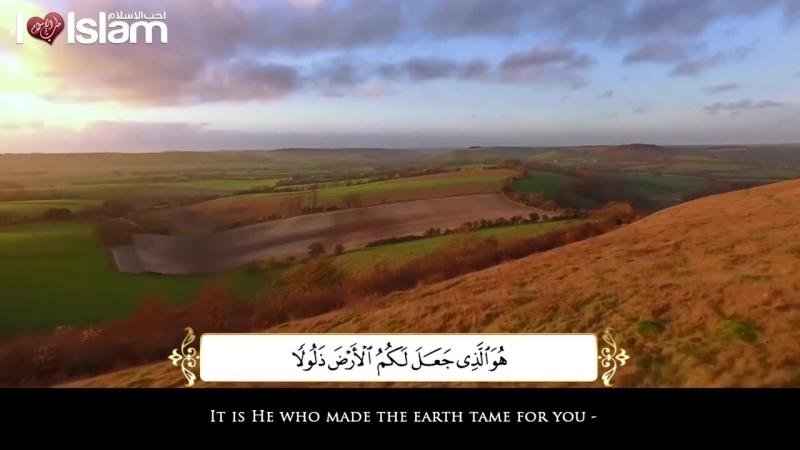 سورة_الملك_-_محمد_المقيط_|_Surah_Al_Mulk_-_Muhammad_al_Muqit.mp4