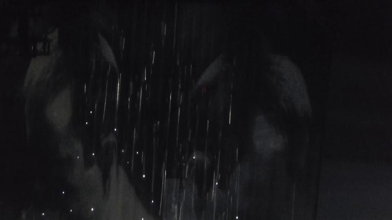 Twenty One Pilots Neon Gravestones Live 11 9 2028 Talking Stick Arena Phoenix AZ