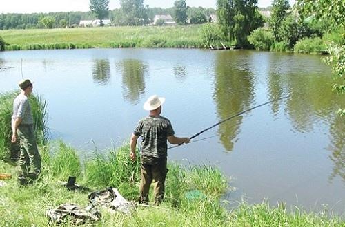 Правильный выбор места для рыбалки – залог хорошего улова попытаться найти рыбный уголок рядом