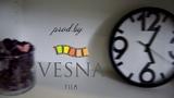 instagram @vesna_film - Самопрезентация, видеопортрет - Съемка, видеомонтаж.
