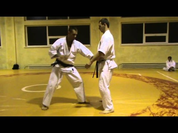 Бушинкан Дзю Дзюцу - Аши наше но ката (Bushinkan Jiu Jitsu)