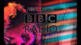Animal Collective BBC Radio Sessions #3 (01-11-05)