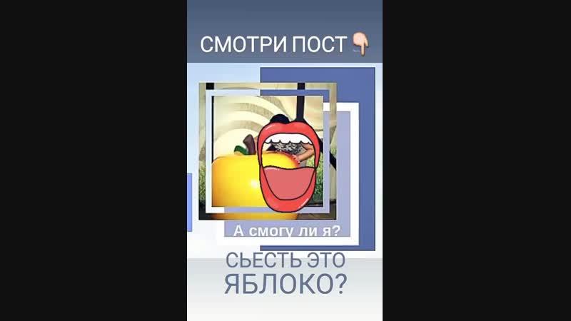 VID_146470105_145126_073.mp4