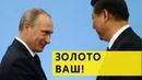 Вслед за лесом Китай берет под свой контроль российские золотые прииски
