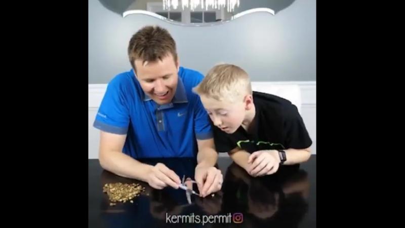 Kermits Permit 11