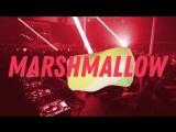 Премьера! Настя Кудри - Marshmallow (Lyric Video)