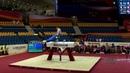 BELYAVSKIY David (RUS) - 2018 Artistic Worlds, Doha (QAT) - Qualifications Pommel Horse