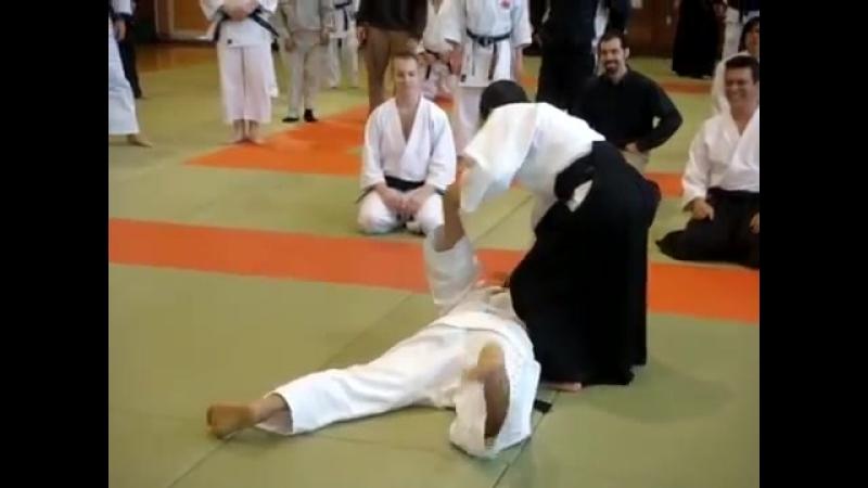 Ju Jutsu.Техника Такумакай Дайто Рю Айки Дзю Дзюцу.