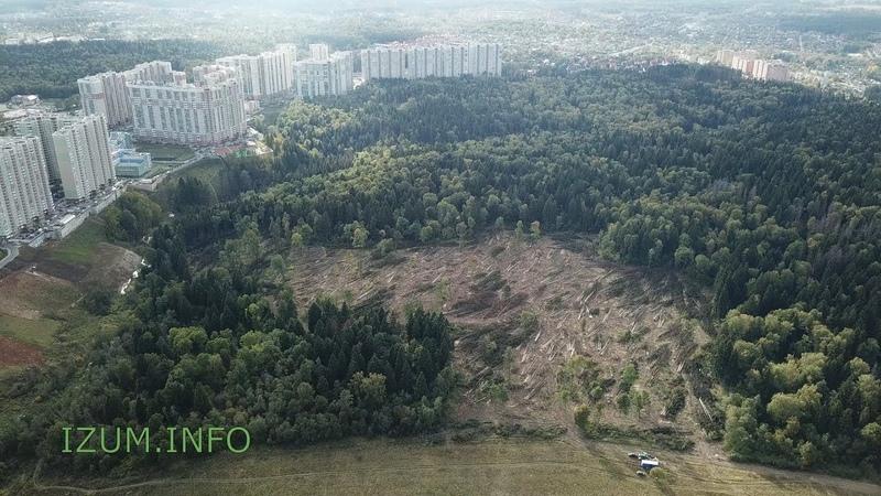 IZUM.INFO 01.10.2018 Продолжение вырубки около Изумрудных холмов и Черневской горки