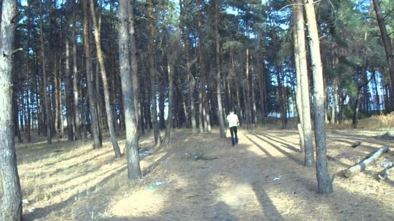 Мегафон-громкоговоритель в лесу
