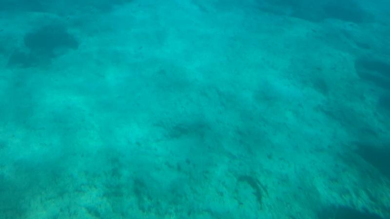 Кипр красота подводного мира 😍❤️