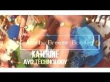 Katerine - Ayo Technology (Malibu Breeze Bootleg) 2018 (httpsvk.comvidchelny)