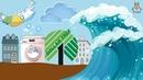Океан, dollar tree и приключения в прачечной