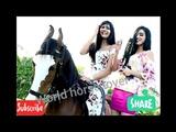 Ankita Sangeeta chauhan horse riding in serial Ek shringaar swabhiman | indian actress horse riding