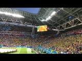 Бразильские болельщики допевают гимн !!