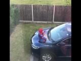 Когда у тебя завёлся Человек-паук