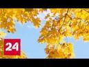 Великан повержен: на территории Европейской России стремительно холодает - Россия 24
