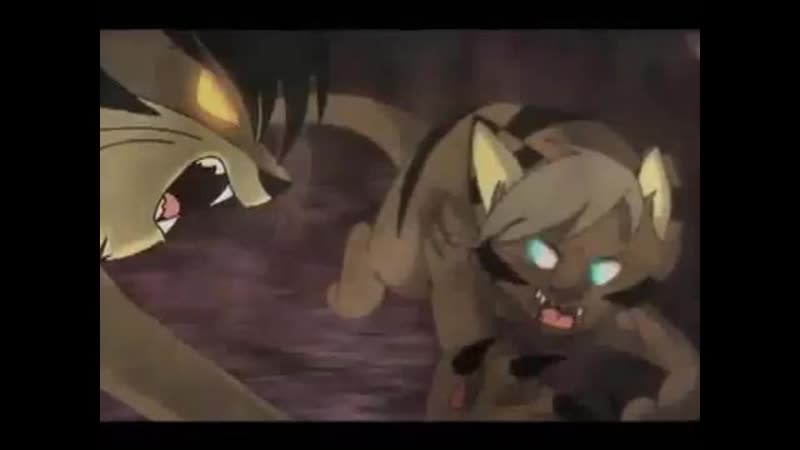 _FINISHED_ WOTF AMV _ Brambleclaw and Hawkfrost _Pet_