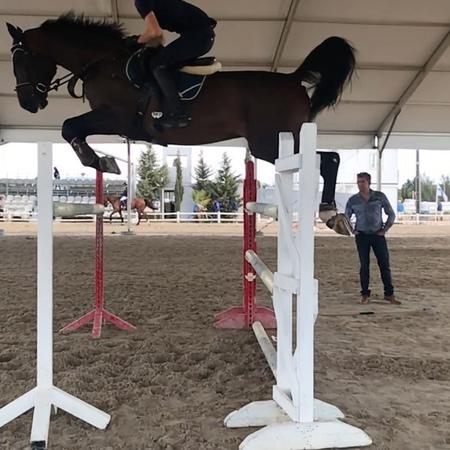 "Hannah Åkerblom on Instagram ""This horse is quite amazing! So athletic DiCaprio ❤️🌟 veredusboots coloredition brownlimitededition veredus ..."