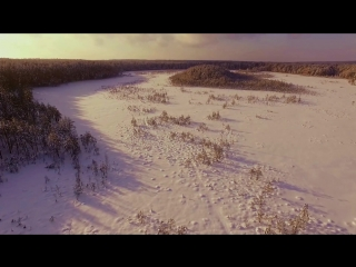 Аэросъемка. Красота Беларуси 9. Моховое болото зимой