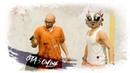 GTA 5 Online - Миссия невыполнима... (Нет)