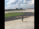 Голого дебошира задержали в аэропорту Атланты