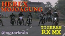 KEREN ! LIHAT KEGILAAN JOKI JOKI HEREX - Drag Bike Mojoagung