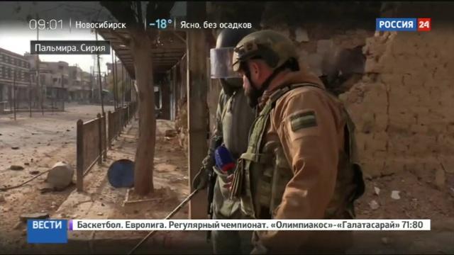 Новости на Россия 24 Разминирование Пальмиры счет обезвреженных боеприпасов идет на сотни