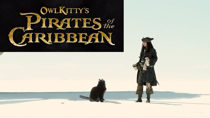 Pirates of the Caribbean - starring my cat OwlKitty