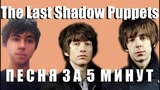 ПЕСНЯ В СТИЛЕ THE LAST SHADOW PUPPETS ЗА 5 МИНУТ