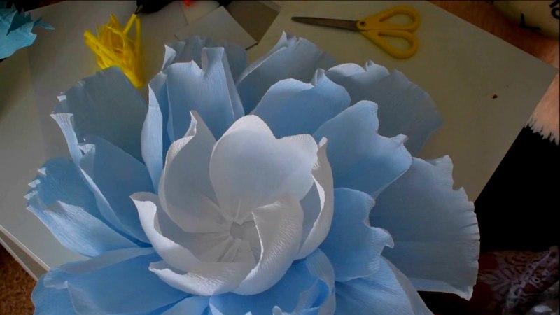 Цветы для фотозоны из гофро. бумаги 2 часть)