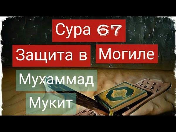 Сура Аль - Мульк 67 / Защита в могиле / Напоминание братья и сёстры
