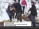 Отшельница Агафья Лыкова не покинет родную тайгу