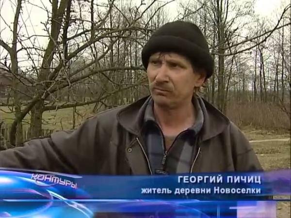 Контуры (ОНТ, 2007) Лесные стрелки