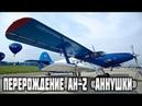 Перерождение Ан-2 «Аннушки» в РФ создали уникальный самолет