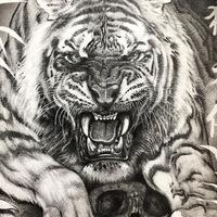 evgesha1208 avatar