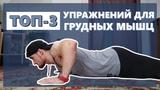 Топ три упражнения для грудных мышц. |SP 12