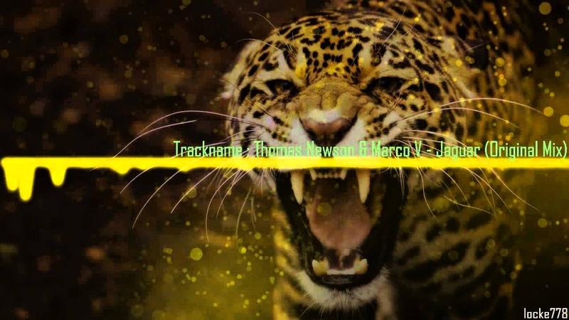 Thomas Newson Marco V - Jaguar (Original Mix)