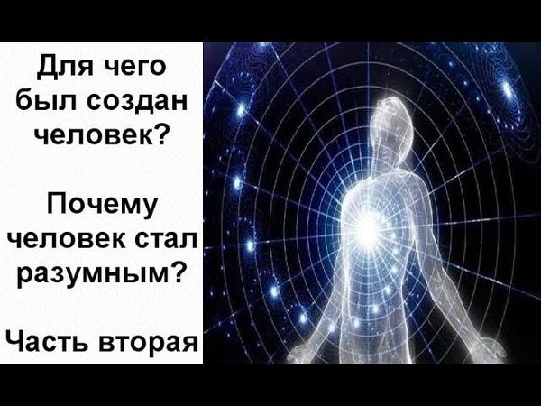 Для чего был создан человек? Почему человек стал разумным? Часть вторая