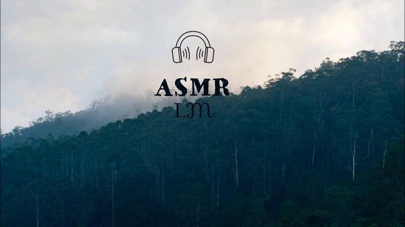 [ASMR] MONSTA X - I.M (Part 2)