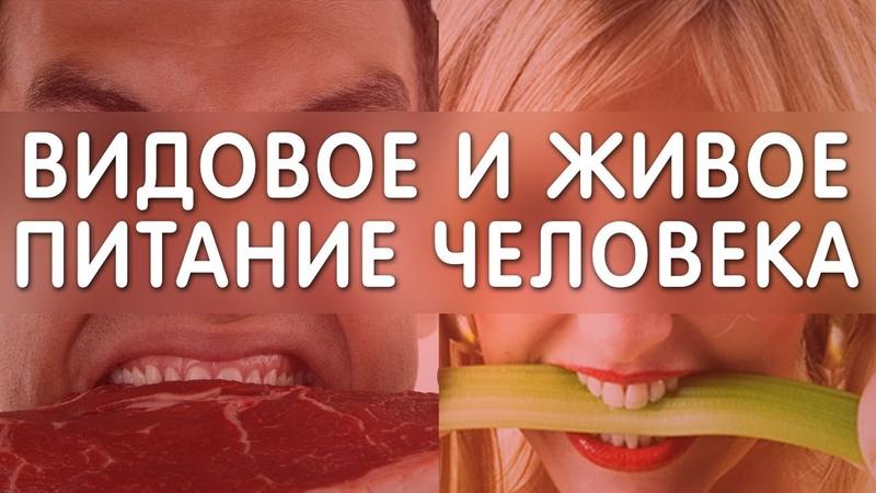 Видовое питание человека. 9 причин болезней, ч.2. Еда и Жизнь. Фролов Ю А