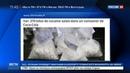 Новости на Россия 24 • Завод Кока-Колы во Франции получил груз кокаина из Латинской Америки