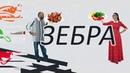 Екатерина Плотко о психосоматике и счастье Зебра